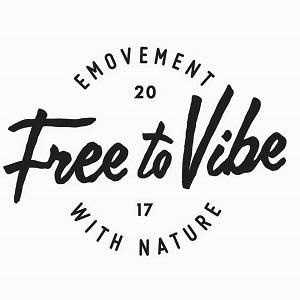 Coches eléctricos de la marca Free to Vibe