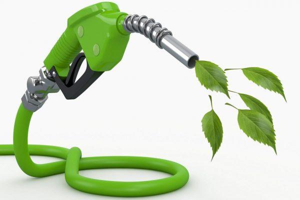 Combustible ecológico fabricado con aceite de vegetal para el Ford Transit